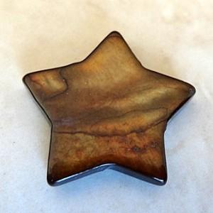 bronzedyedshellstar24mm